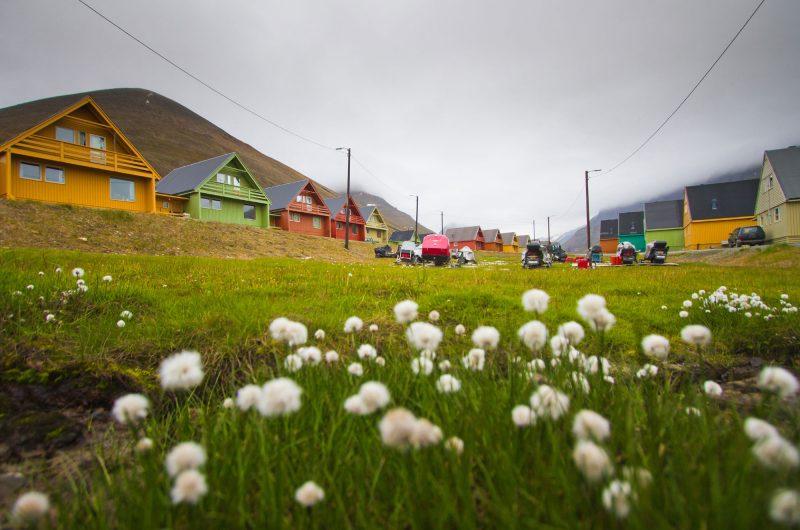 svalbard longyearbyen coloured houses summer istock