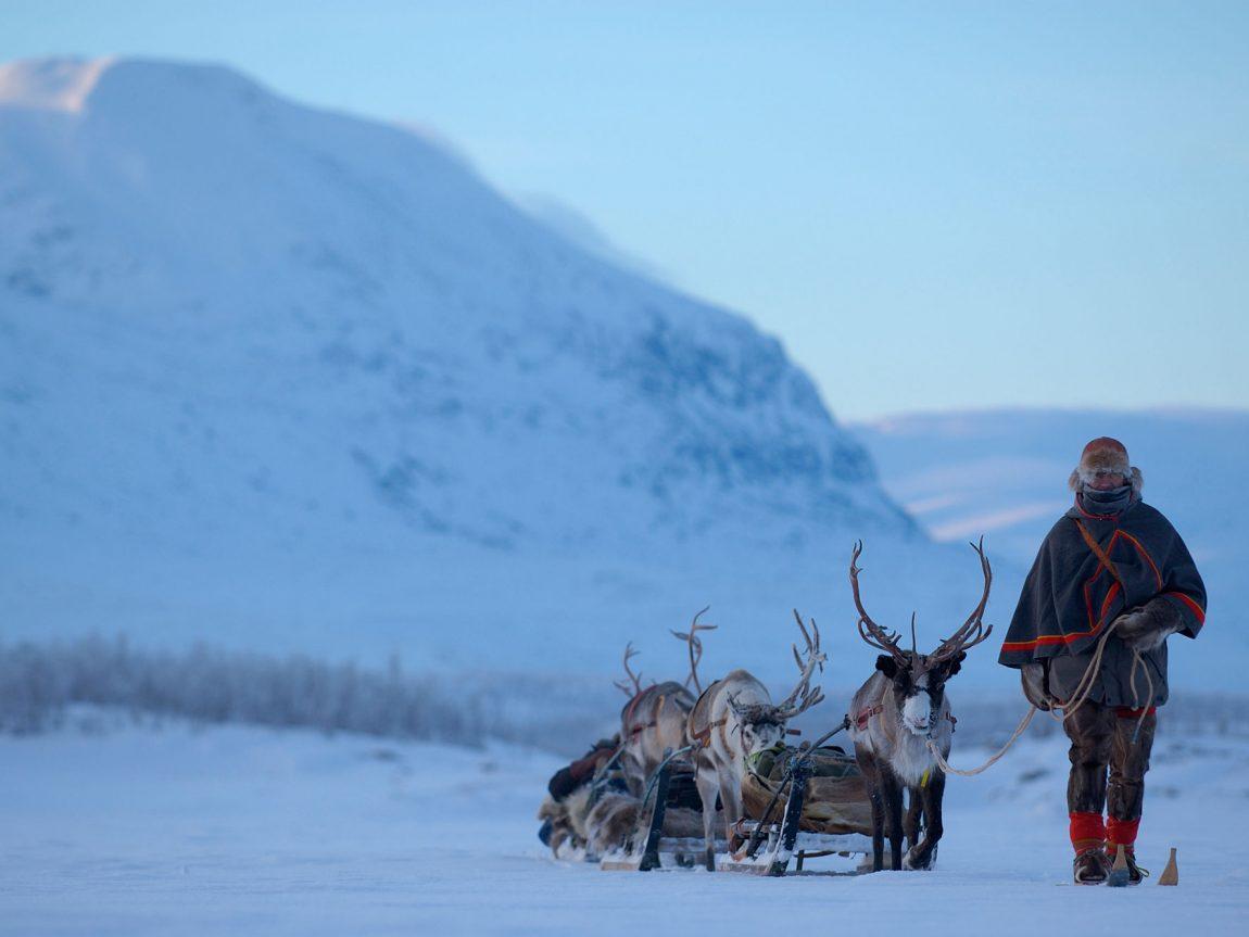 sweden lapland reindeer safari with sami vs