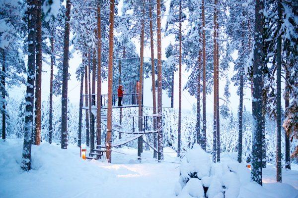 sweden lapland treehotel mirror cube gr