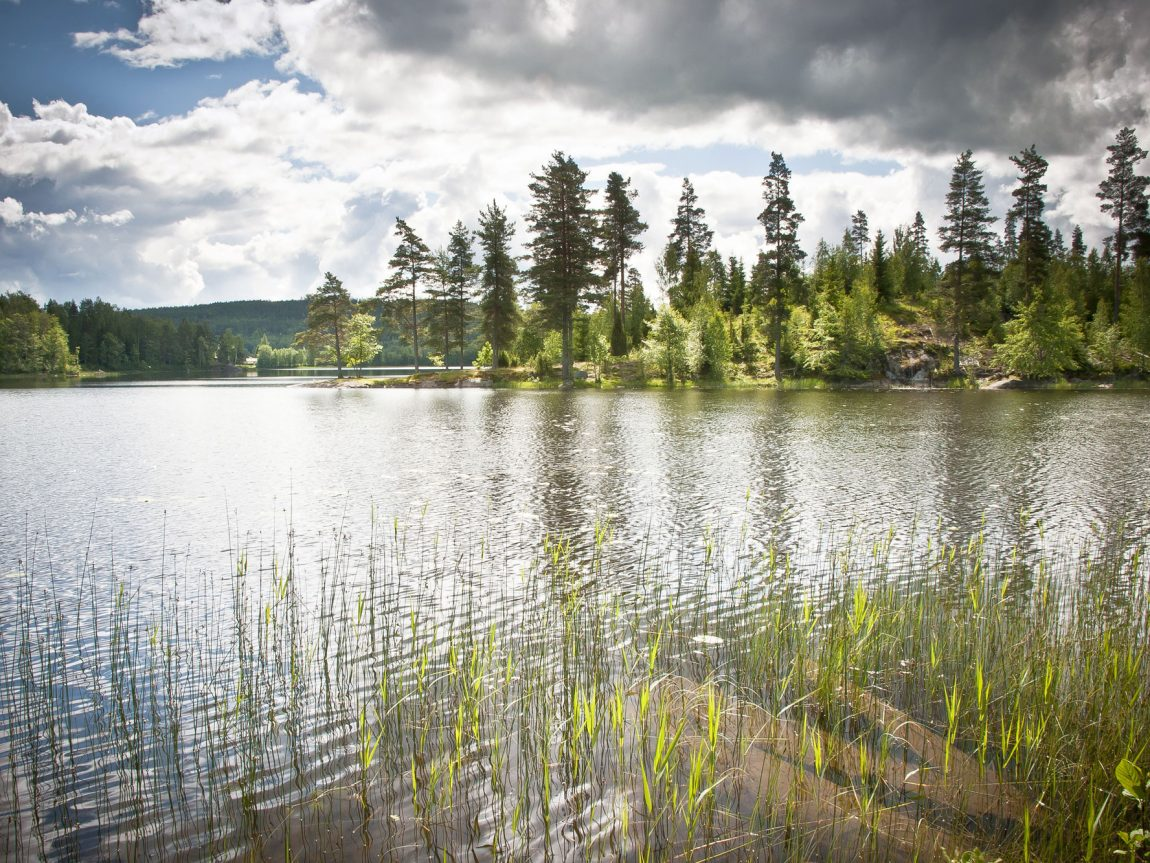 sweden varmland lakeview summer vs