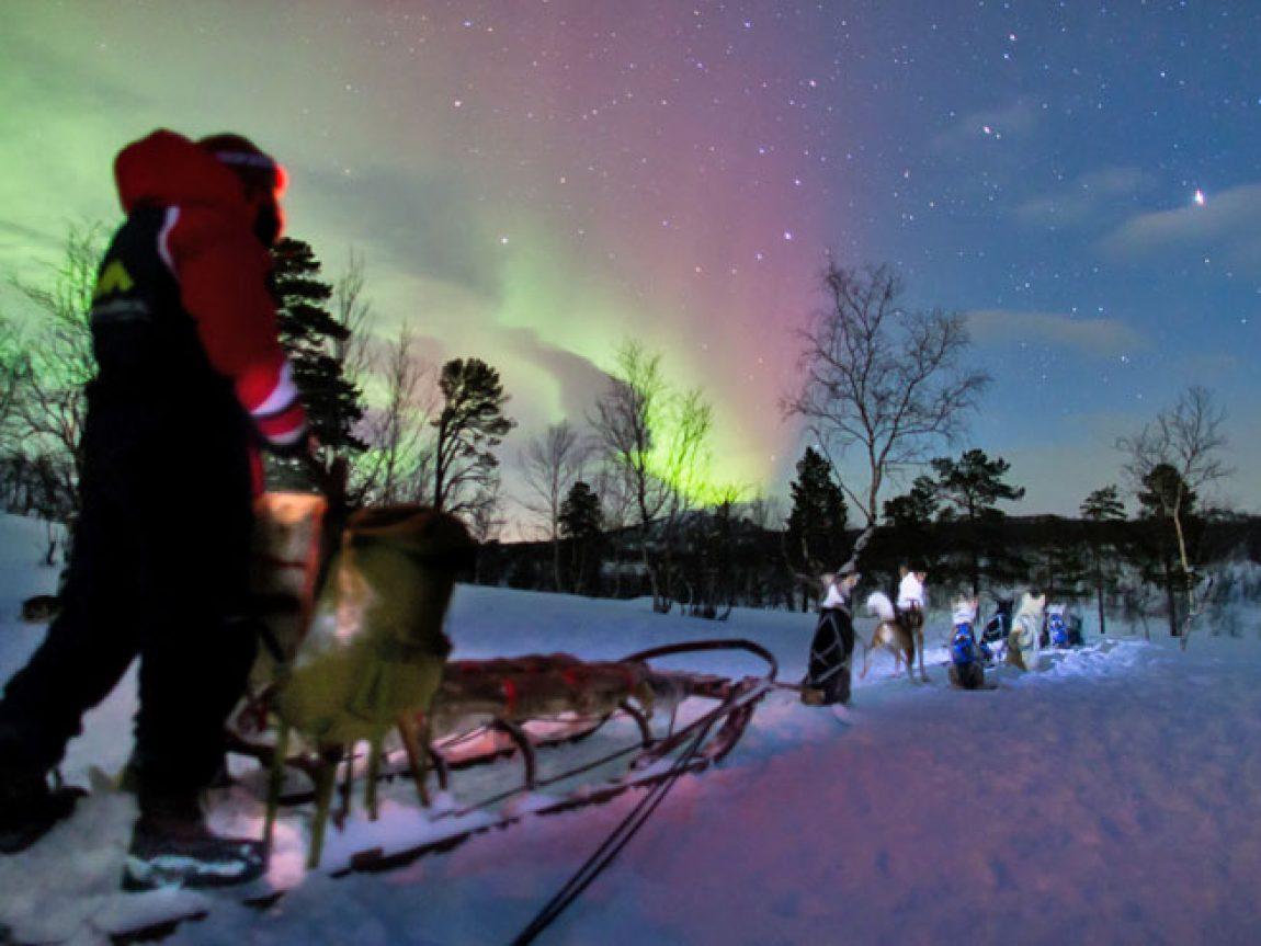 swedish lapland abisko aurora hunt by husky lm