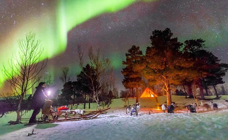 swedish lapland abisko husky sledding and aurora lm