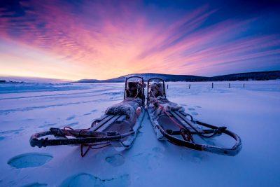 swedish lapland icehotel husky sleds