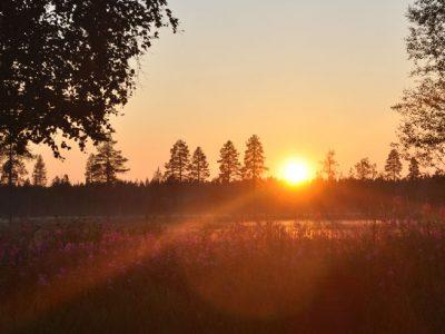 swedish lapland kangos summer midnight sun etn