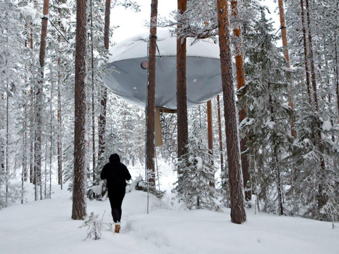 treehotel the ufo