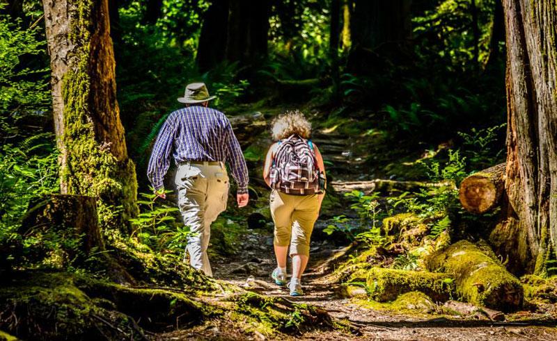 west coast wilderness lodge walking the skookumchuck trail