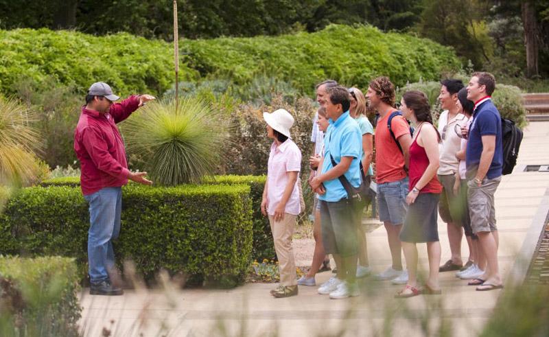 australia adelaide botanic gardens aboriginal guide