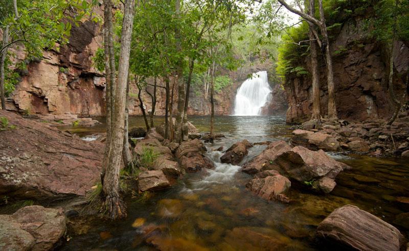 australia nt litchfield national park waterfall