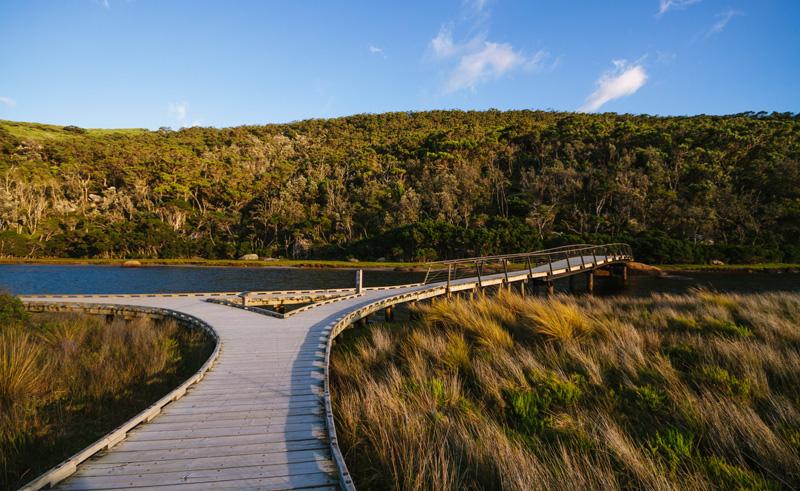 australia victoria wilsons promontory boardwalk tourvic