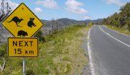 australia victoria wilsons promontory national park road sign astk