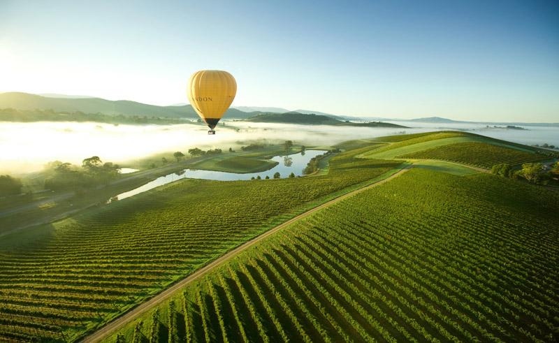 australia victoria yarra valley hot air ballooning