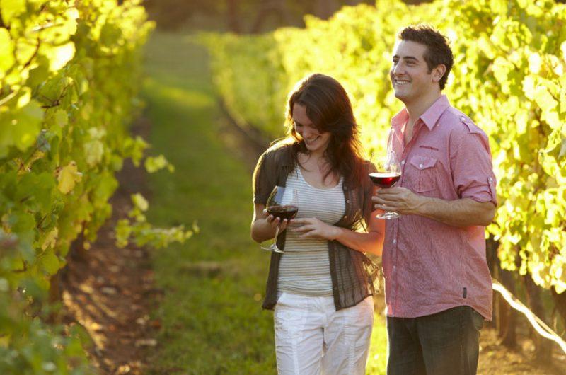 australia wine and wildlife tour melbourne2