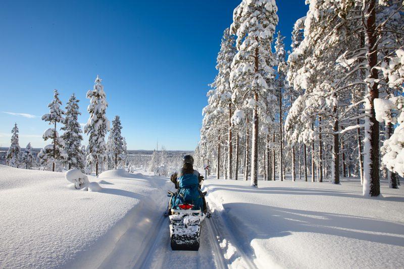 finland lapland snowmobile taiga sunshine istk