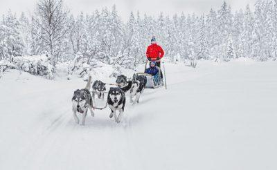 finnish lapland ruka husky safari