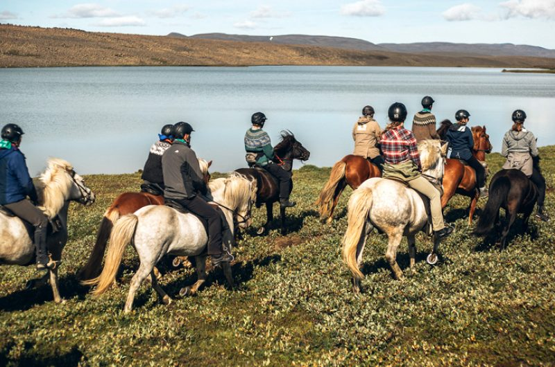 iceland south west horse riding ish
