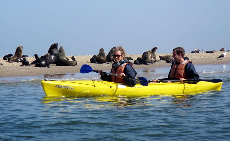 namibia swakopmund pelican point kayaking ppk