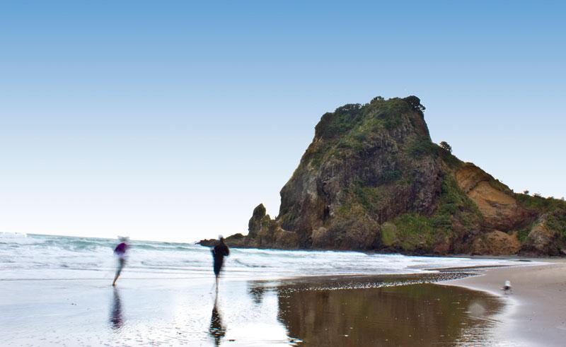 new zealand auckland best of both worlds beach
