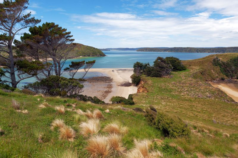 new zealand southland view from stewart island istk