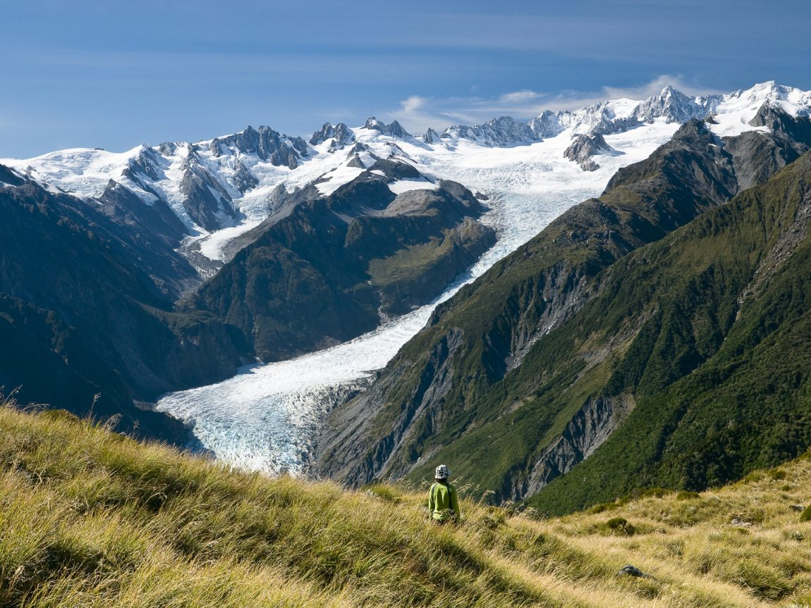 new zealand west coast fox glacier valley twc