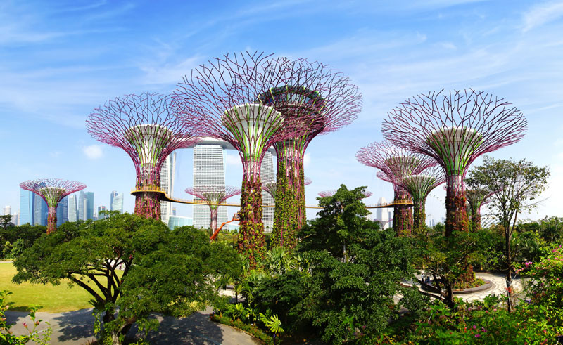 singapore supertree grove gardens by the bay astock