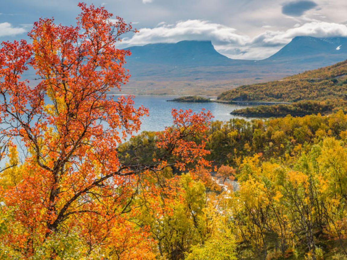 swedish lapland abisko autumn istk