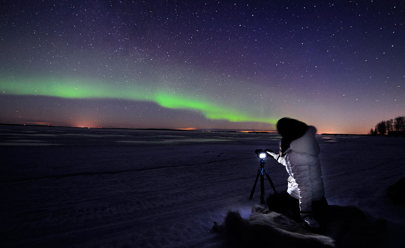 swedish lapland northern lights sled tour