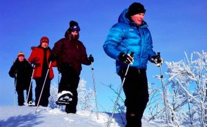 swedish lapland snowshoe tour from ripan
