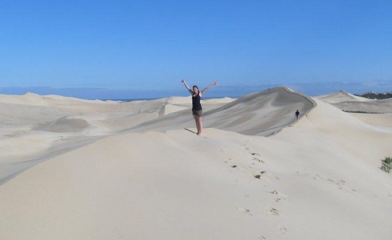 Sossusvlei desert dune45