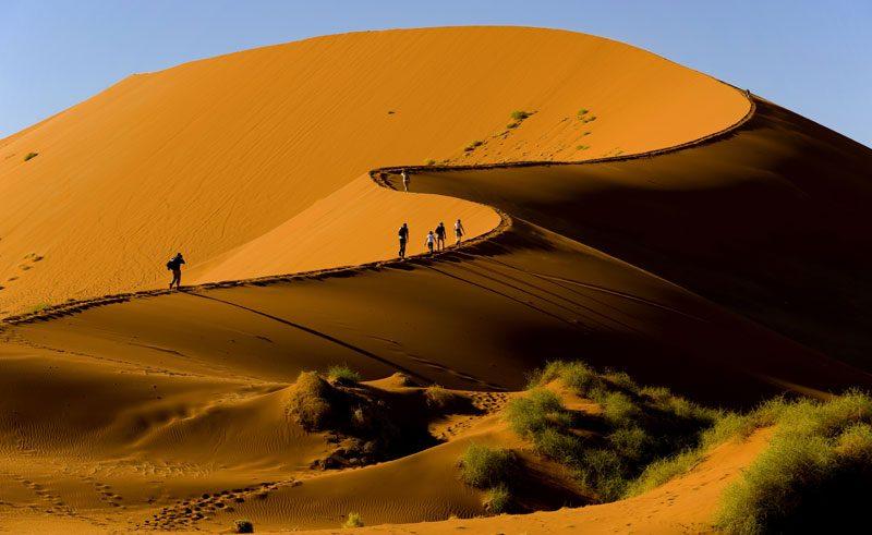 Sossusvlei desert dunes curve