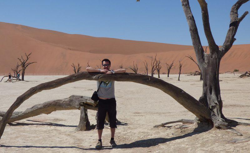 Sossusvlei desert tree