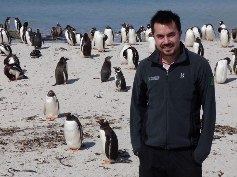 antarctica falklands bleaker island
