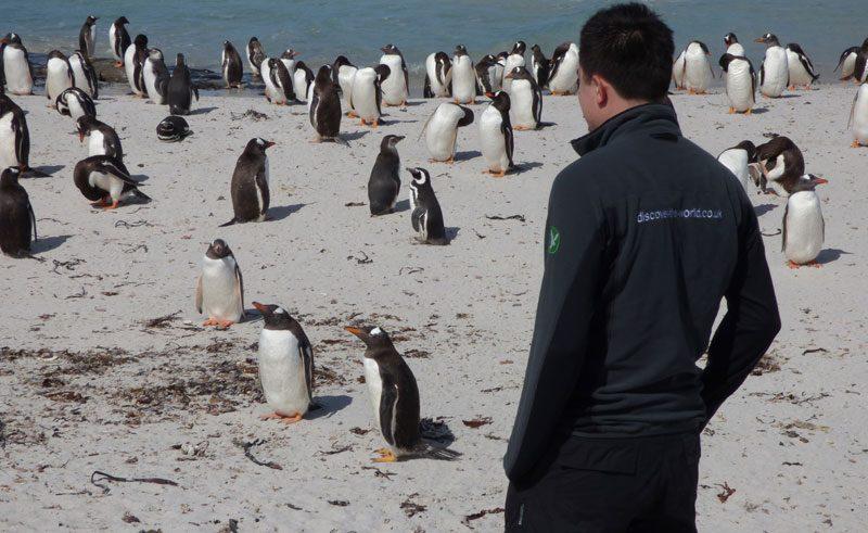 antarctica falklands bleaker island gary