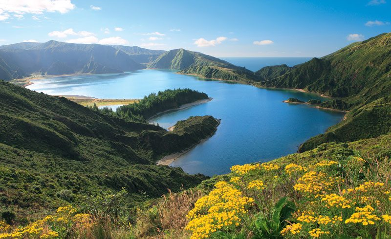 azores fogo lake and flowers