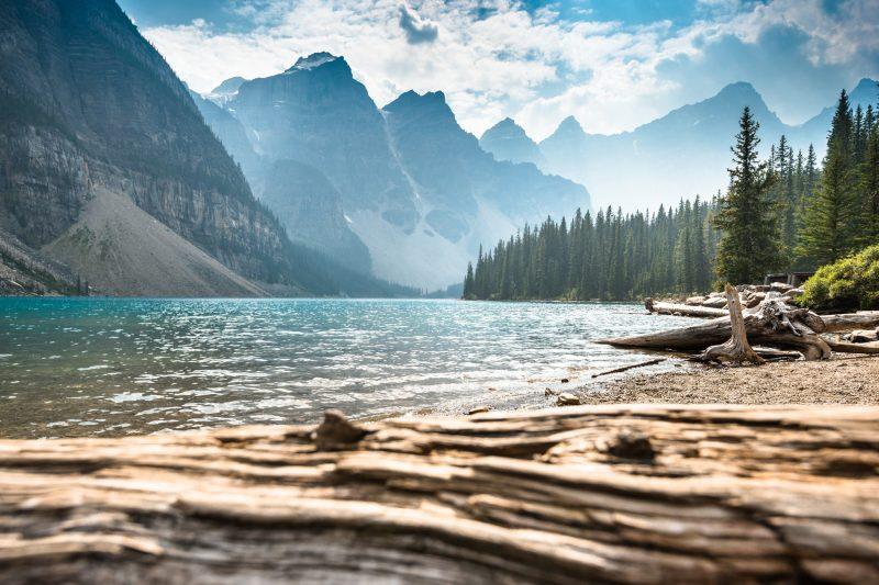 canada alberta banff moraine lake driftwood istk