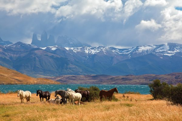 chile patagonia laguna azul istk