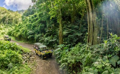 cook islands raro safari 4wd inland tour