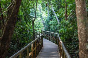 costa rica arenal national park walkway istk