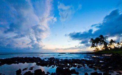 hawaii the big island morning dolphin and kealakekua bay snorkel tour htb