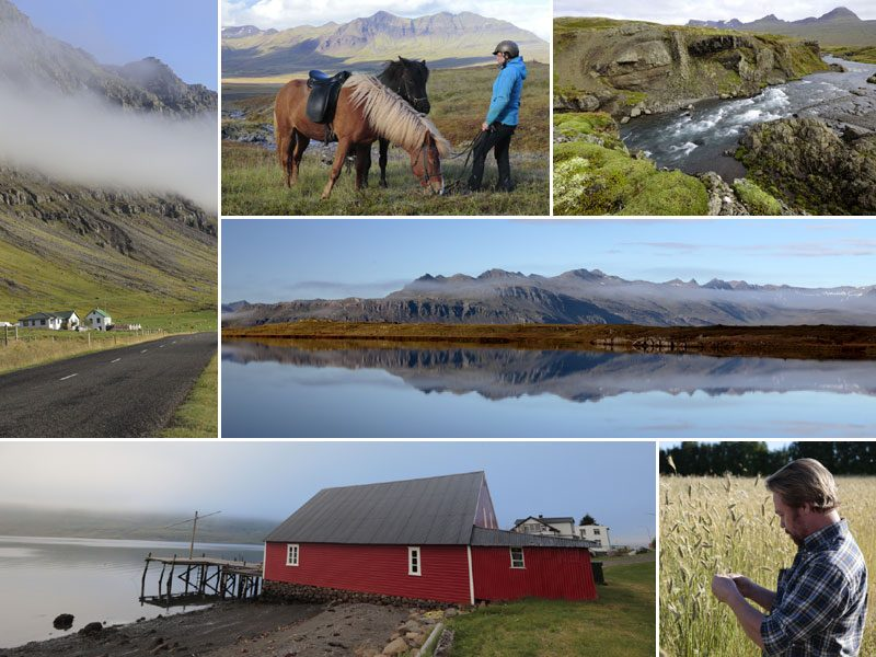 iceland east fjords collection will gray