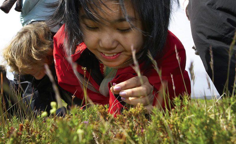 iceland student studying flora