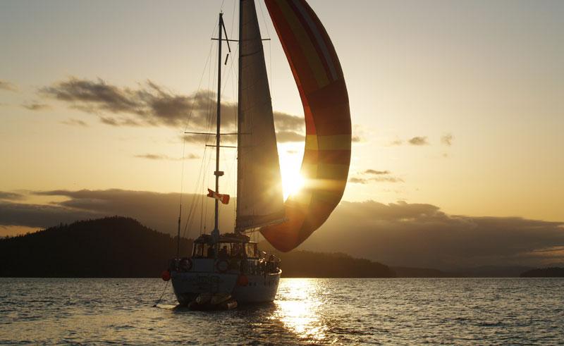 island roamer sunset