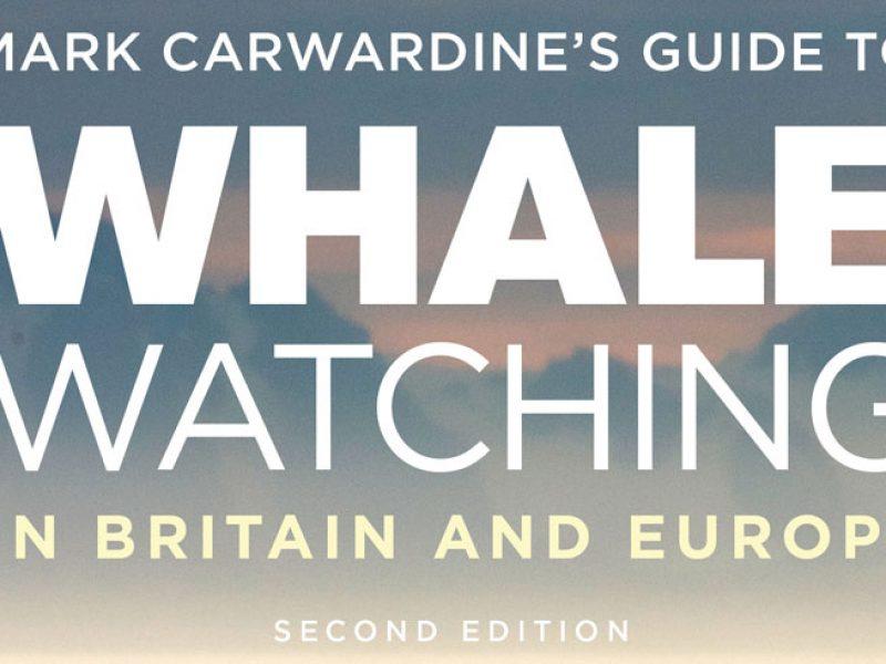 mark carwardine cover