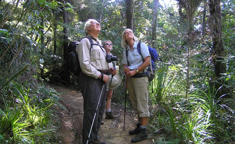 new zealand coromandel kiwi dundee guided tour