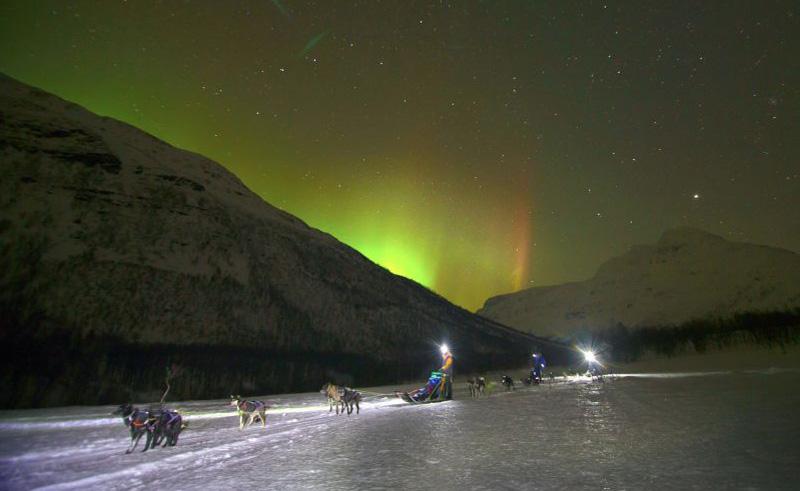 northern norway northern lights dog sledding