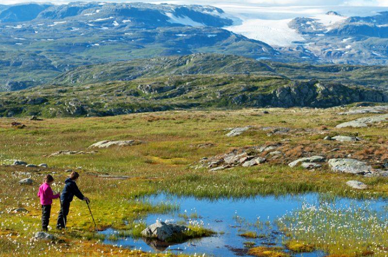 norway hardangervidda