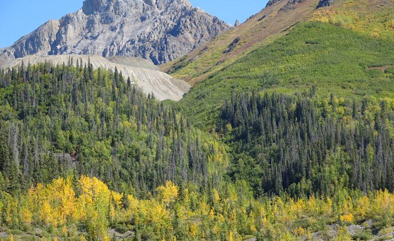 root glacier hike rangell stelias blog