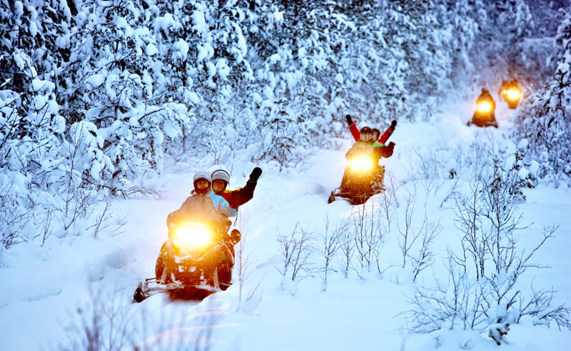 swedish lapland snowmobile forest tour lulea