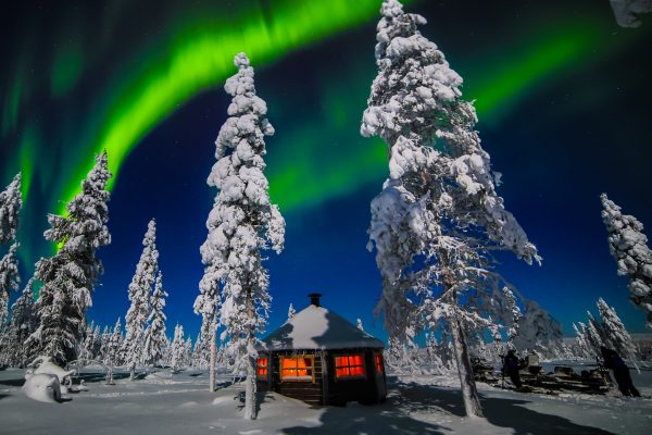 finnish lapland saariselka muotka wilderness aurora