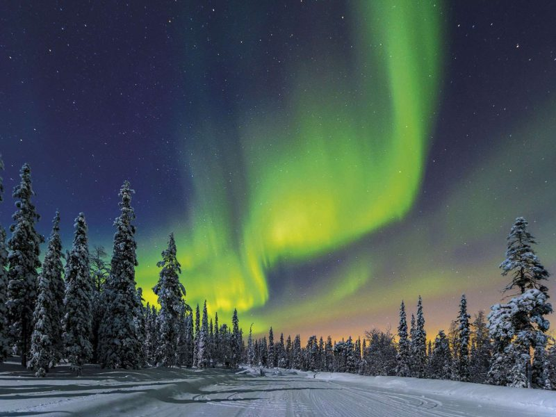 finland aurora over forest istk