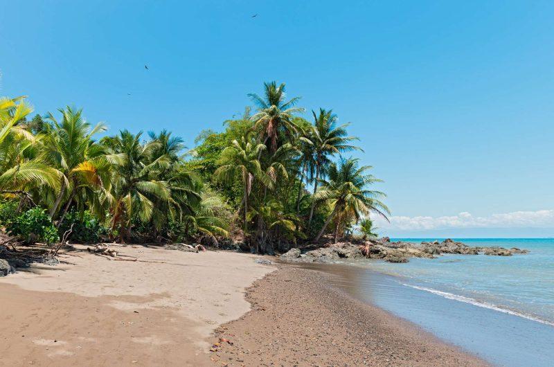 costa rica drake bay beach istk